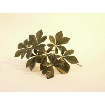 EUROPALMS Chestnut Branch without Blossoms,60cm #2