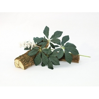 EUROPALMS Chestnut Branch with Blossoms, 60cm #3