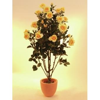 EUROPALMS Rose shrub, light-yellow, 140cm #2