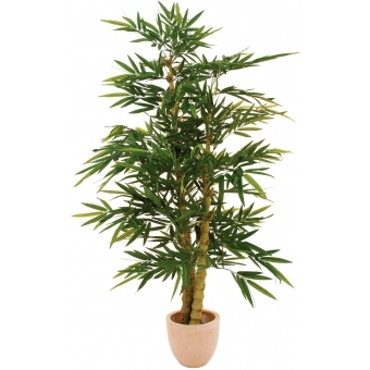 EUROPALMS Bamboo with pearl trunk, 210cm