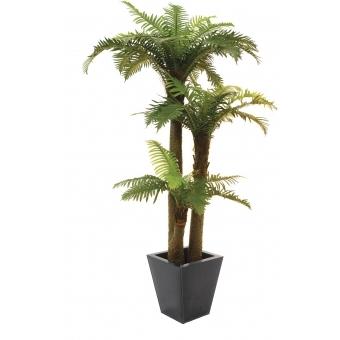 EUROPALMS Fern palm, 160cm