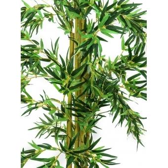 EUROPALMS Bamboo multi trunk, 150cm #2