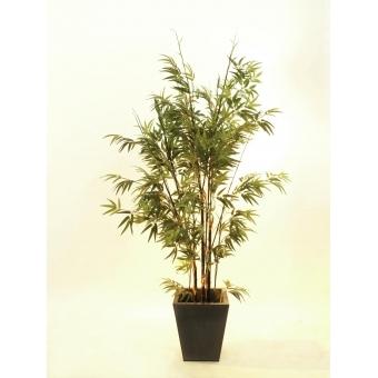 EUROPALMS Bamboo black trunk, 240cm #3