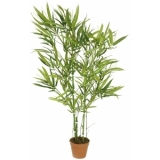 EUROPALMS Bamboo green trunk, 115cm