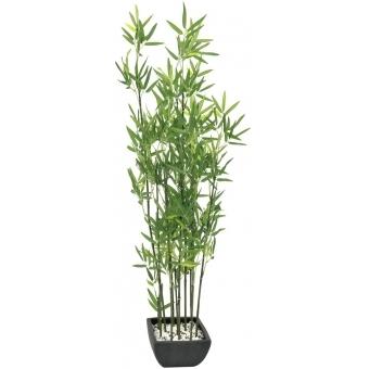 EUROPALMS Bamboo in Bowl, 120cm