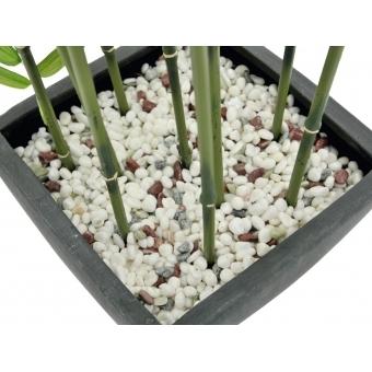 EUROPALMS Bamboo in Bowl, 120cm #3