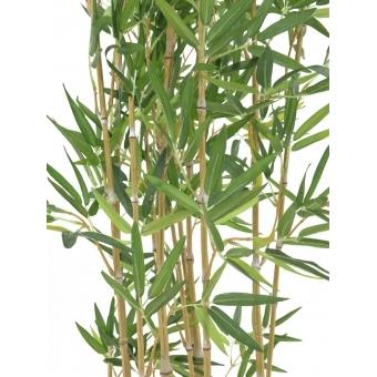 EUROPALMS Bamboo in Bowl, 150cm #2