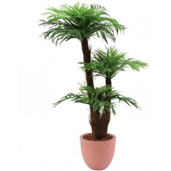 EUROPALMS Areca palm with palm fiber trunk, 120cm
