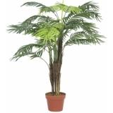 EUROPALMS Areca palm, 110cm