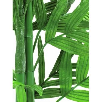 EUROPALMS Areca palm, 230cm #3