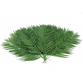 EUROPALMS Coconut Palm Branch 110cm 12x