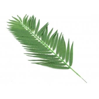EUROPALMS Coconut Palm Branch 110cm 12x #2