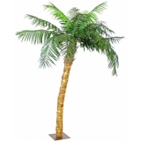 EUROPALMS Coconut Tree with Trunk, 320 cm