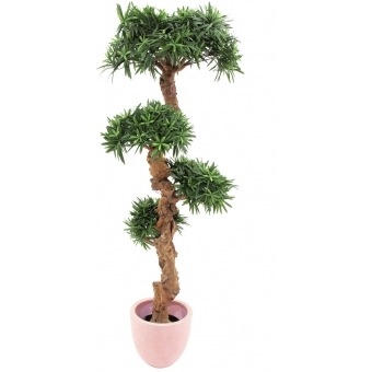 EUROPALMS Bonsai tree, 120cm