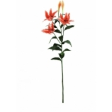 EUROPALMS Tiger lily, orange, 97cm