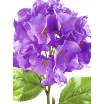EUROPALMS Hydragena spray, lavender, 76cm #2