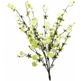EUROPALMS Cherry spray, cream, 60cm