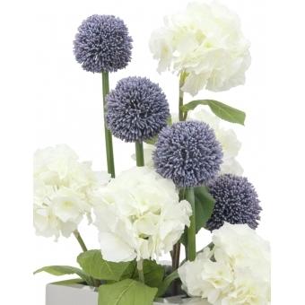 EUROPALMS Allium spray, lavender, 55cm #5