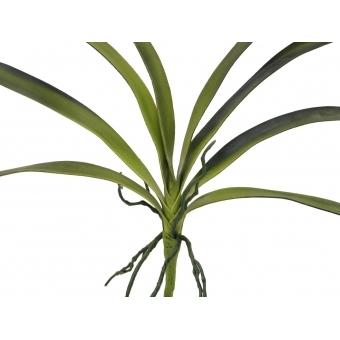 EUROPALMS Orchid leaf (EVA), green, 45cm #2