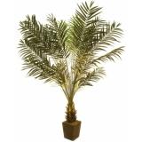 EUROPALMS Cycus bush, 223cm