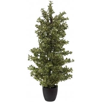 EUROPALMS Wood ficus silver leaf, 120cm