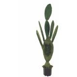 EUROPALMS Nopal cactus, 130cm