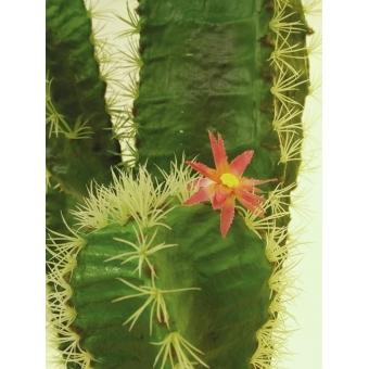 EUROPALMS Mexican cactus, 170cm #4