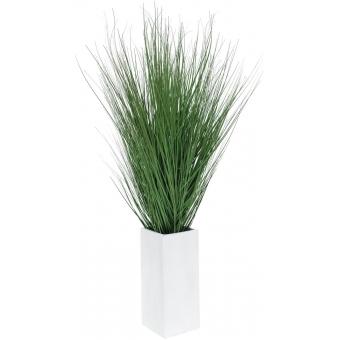 EUROPALMS Marram grass, 95cm