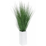 EUROPALMS Marram grass, 95cm