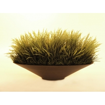 EUROPALMS Mixed grass, 40cm #4