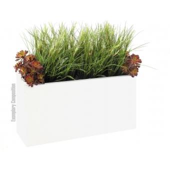 EUROPALMS Onion grass bush, 66cm #2
