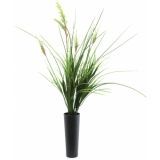 EUROPALMS Onion grass bush, 66cm