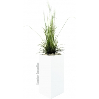 EUROPALMS River grass April, 175cm #2