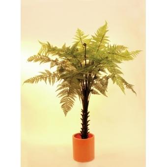 EUROPALMS Woodwardia tree, 180cm #2