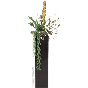 EUROPALMS Zamifolia, 70cm #3