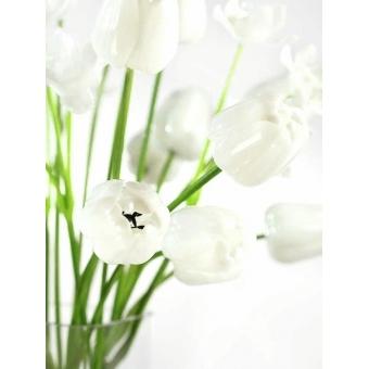 EUROPALMS Crystal tulip, white 61cm 12x #4
