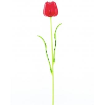 EUROPALMS Crystal tulip, red 61cm 12x