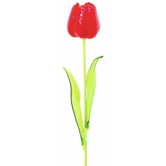 EUROPALMS Crystal tulip, red 61cm 12x #2
