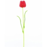 EUROPALMS Crystal tulip, red 61cm 12x