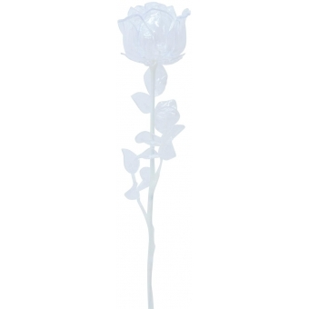 EUROPALMS Crystal rose, clear 81cm 12x