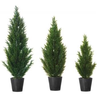 EUROPALMS Cypress, 140cm #2