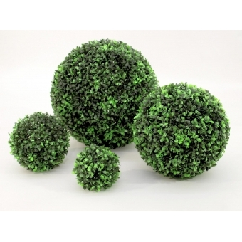 EUROPALMS Boxwood ball, ~10cm #4