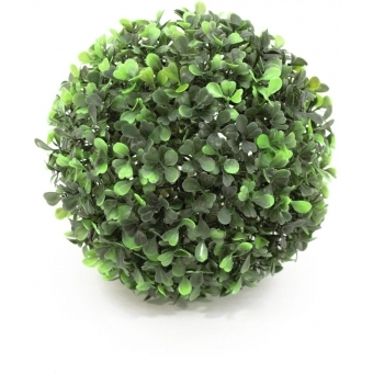 EUROPALMS Boxwood ball, ~20cm