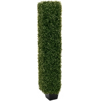 EUROPALMS Boxwood Column, 118cm