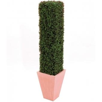 EUROPALMS Boxwood Column, 118cm #2