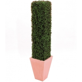 EUROPALMS Boxwood Column, 118cm #3