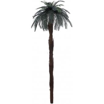 EUROPALMS Cycas Palm Tree 210cm