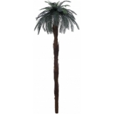 EUROPALMS Cycus palm tree 210cm