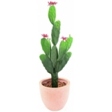 EUROPALMS Cactus with flower, 77cm