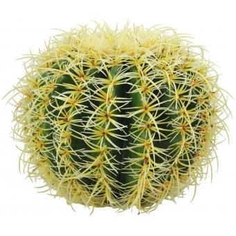 EUROPALMS Barrel Cactus, 27cm